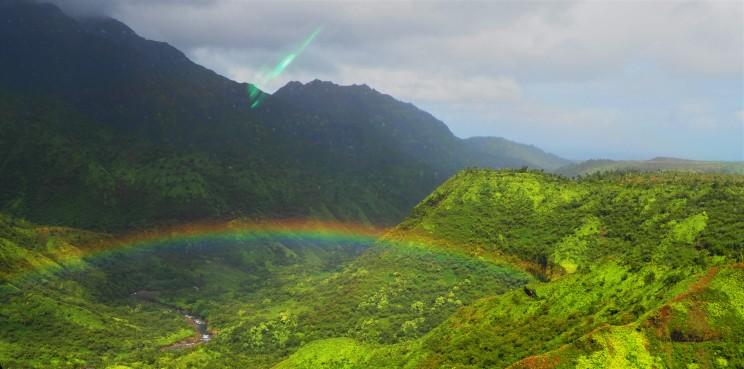 Rainbows everywhere!