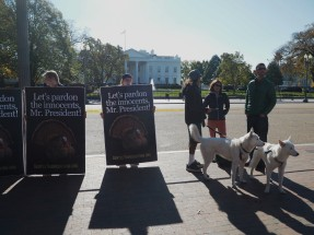 Interesting protesters near the White House